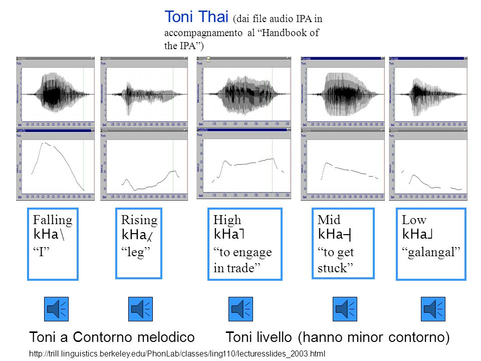 Toni Thai (dai file audio IPA in accompagnamento al Handbook of the IPA )