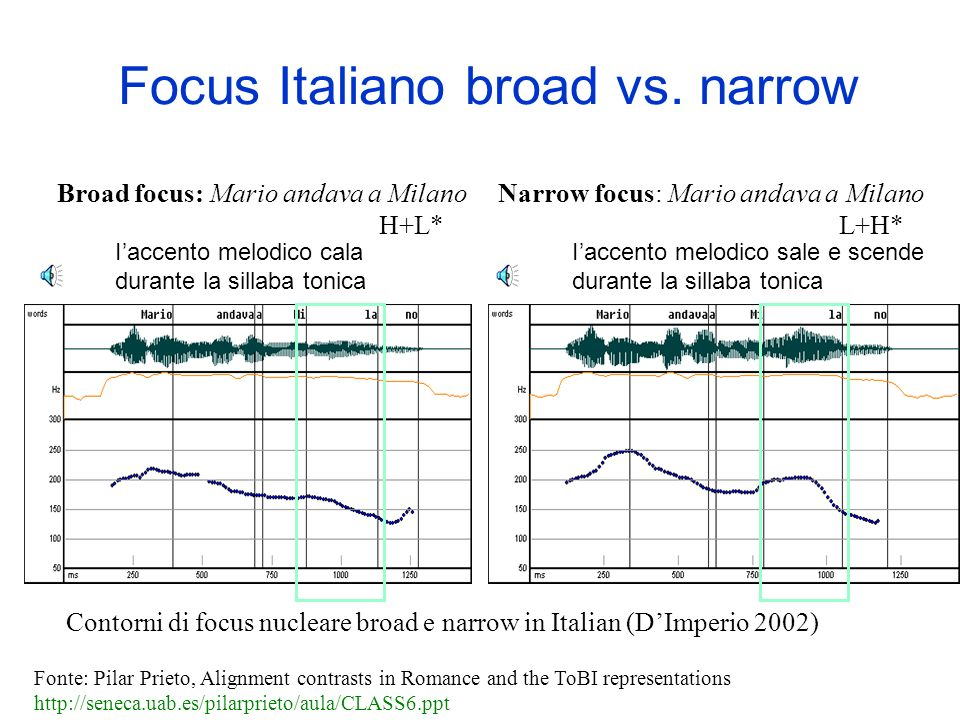 Focus Italiano broad vs. narrow