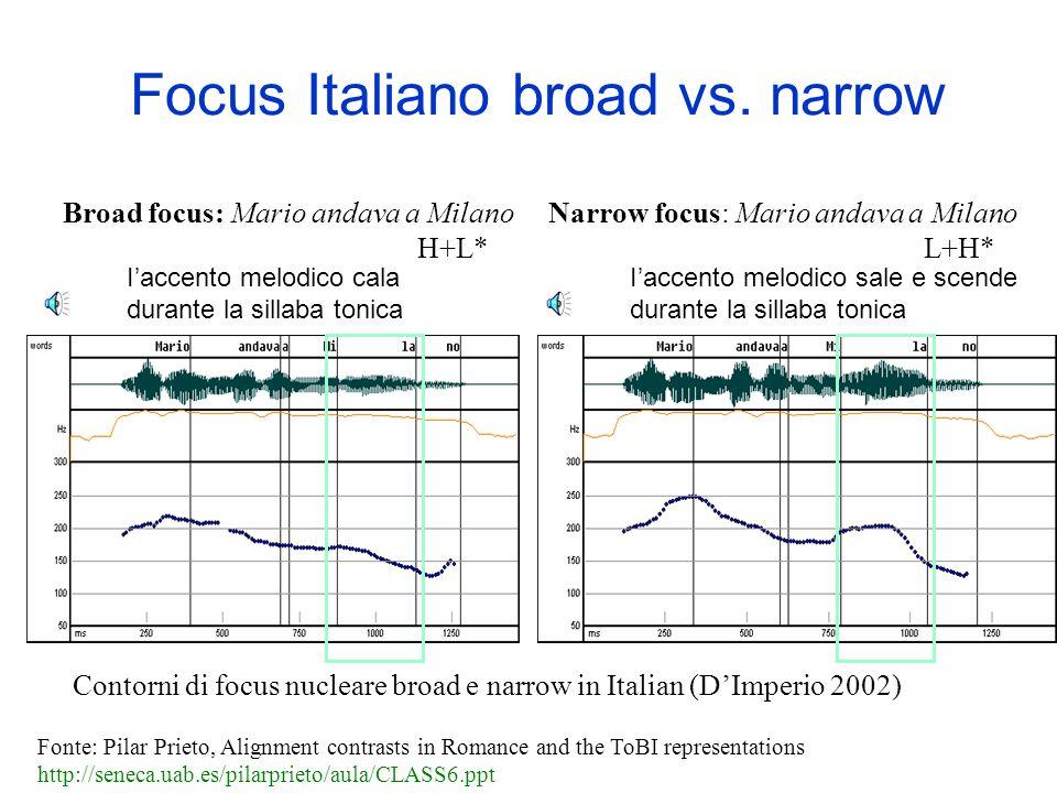 Focus Italiano broad vs. narrow