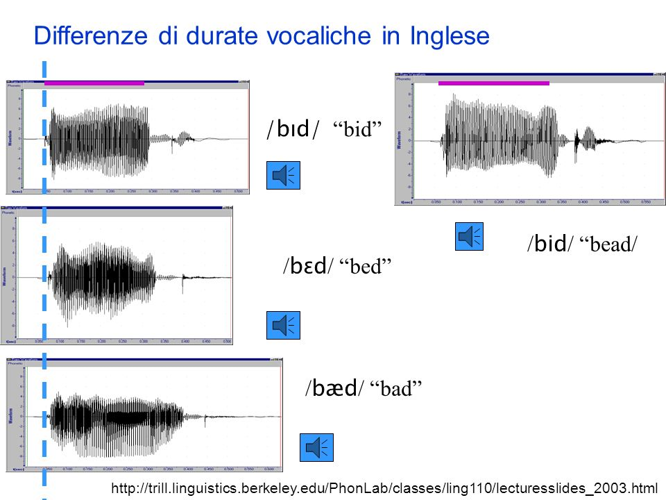 Differenze di durate vocaliche in Inglese