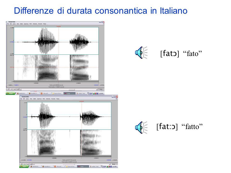 Differenze di durata consonantica in Italiano