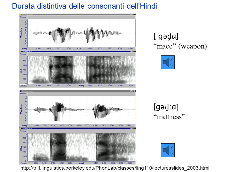 Durata distintiva delle consonanti dell'Hindi