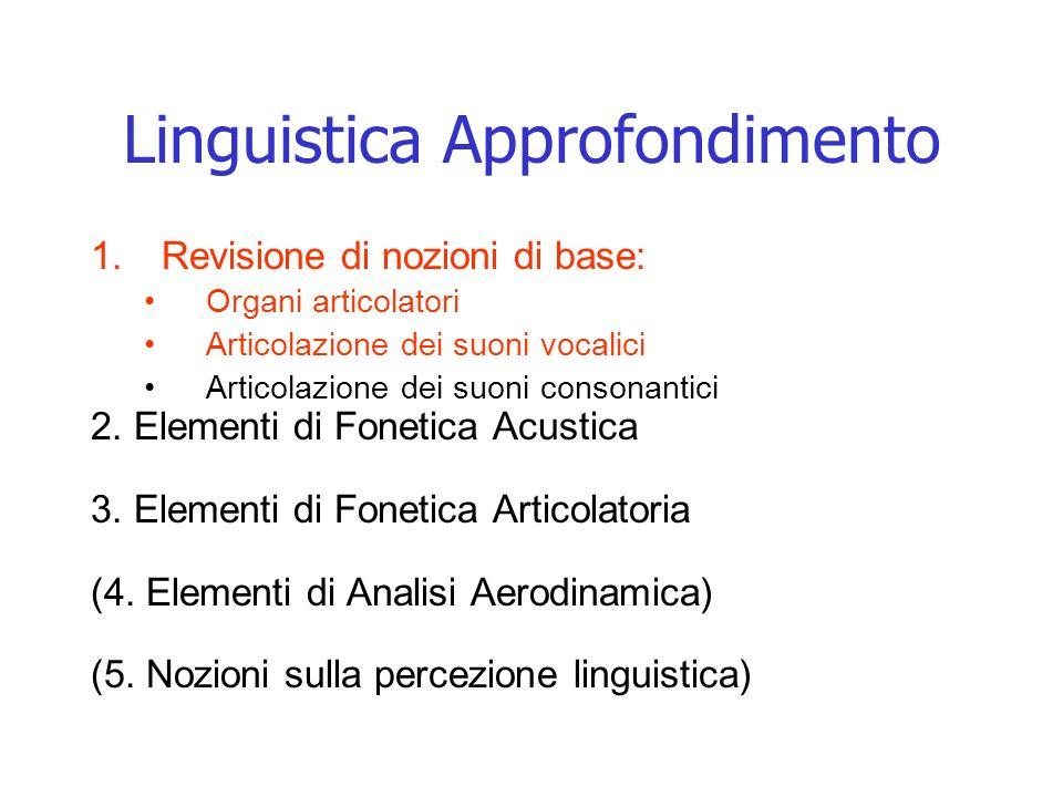 Linguistica Approfondimento