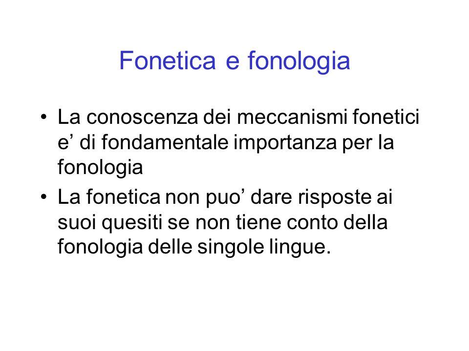 Fonetica e fonologia La conoscenza dei meccanismi fonetici e' di fondamentale importanza per la fonologia.