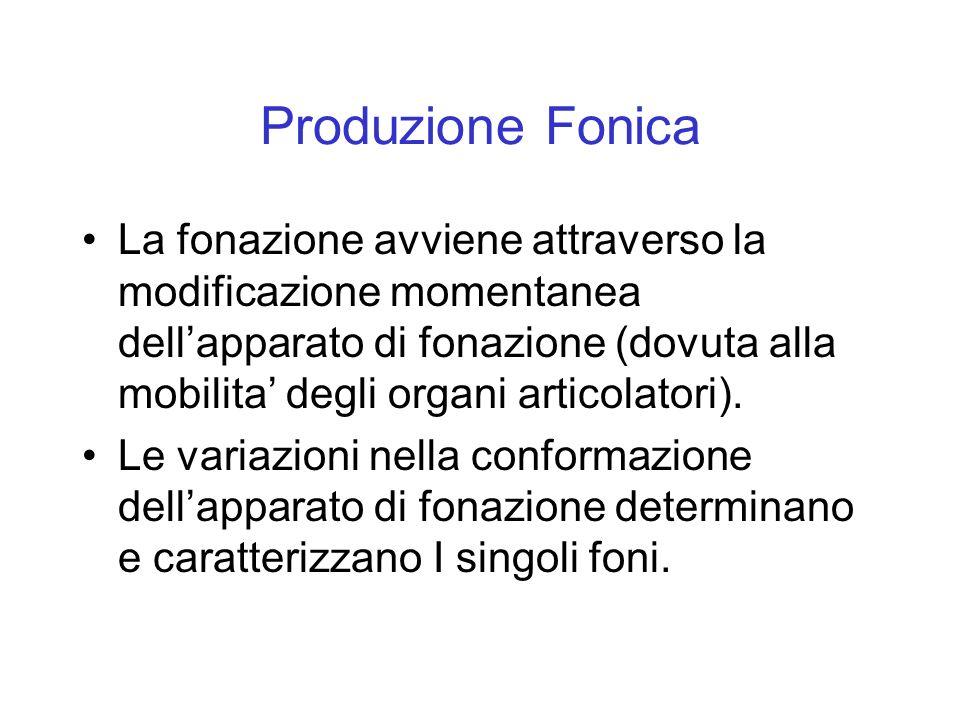 Produzione Fonica