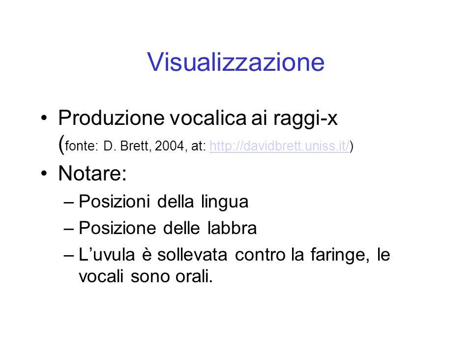 Visualizzazione Produzione vocalica ai raggi-x (fonte: D. Brett, 2004, at: http://davidbrett.uniss.it/)