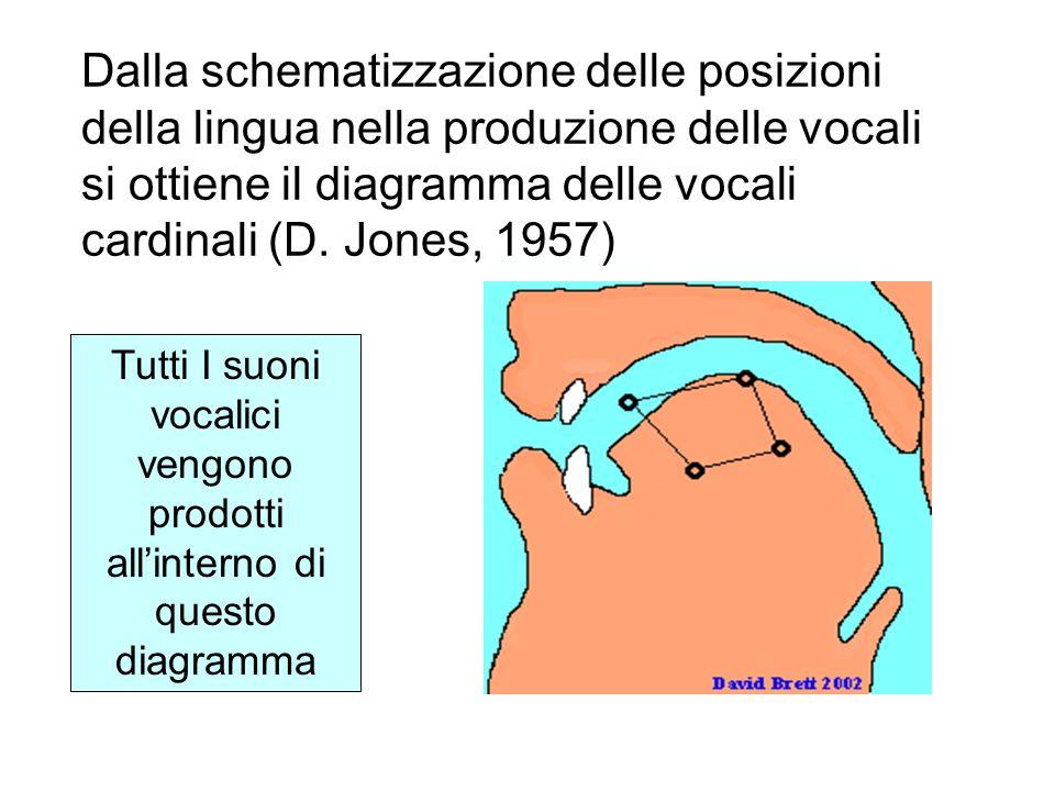 Dalla schematizzazione delle posizioni della lingua nella produzione delle vocali si ottiene il diagramma delle vocali cardinali (D. Jones, 1957)