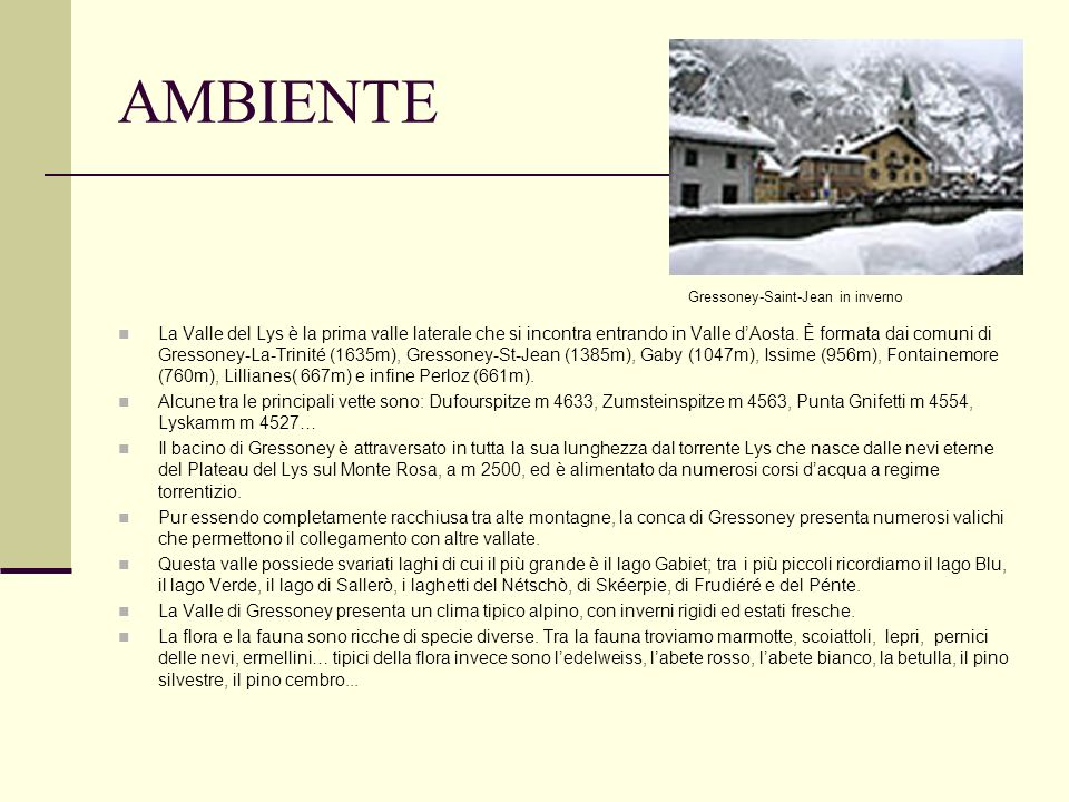 AMBIENTEGressoney-Saint-Jean in inverno.