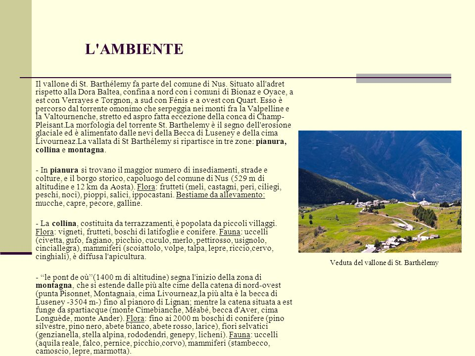 L AMBIENTE