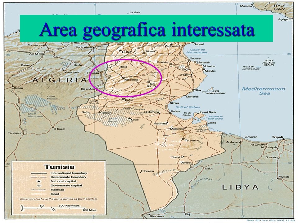 Area geografica interessata