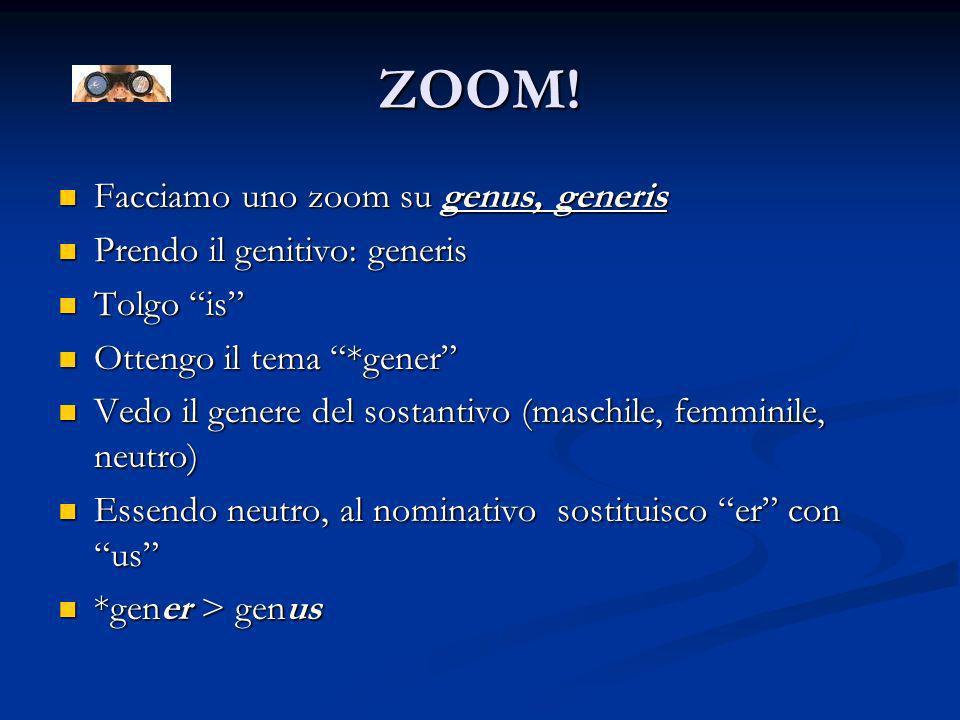 ZOOM! Facciamo uno zoom su genus, generis Prendo il genitivo: generis