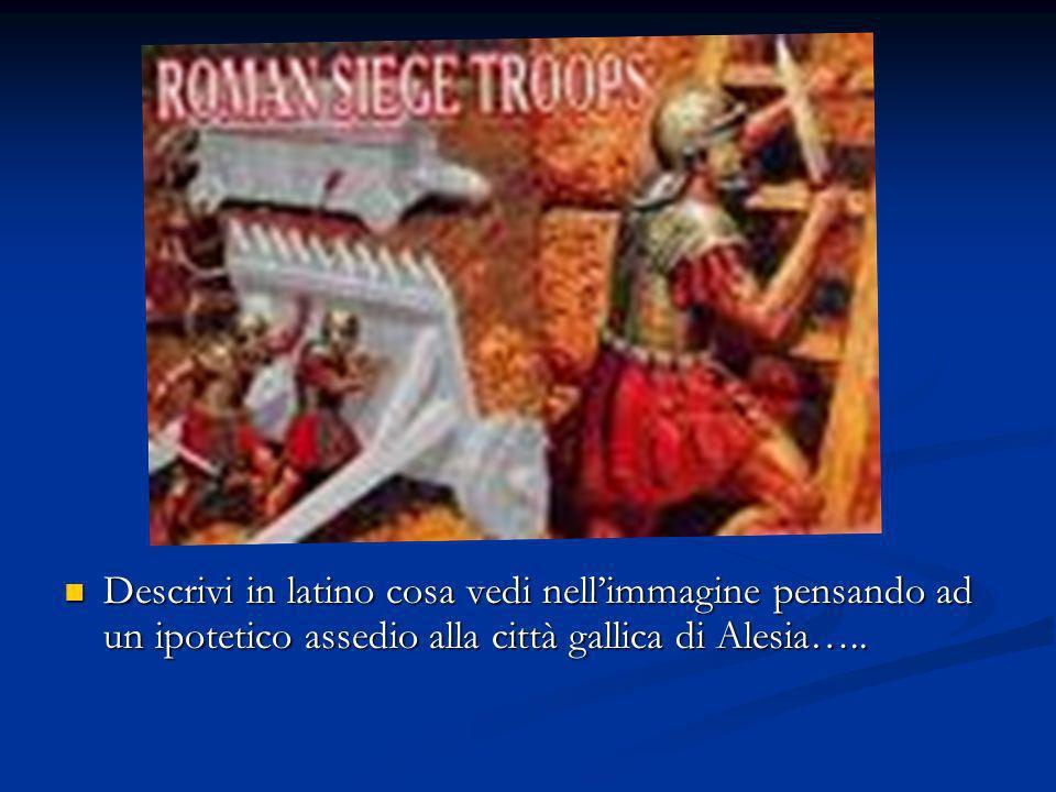 Descrivi in latino cosa vedi nell'immagine pensando ad un ipotetico assedio alla città gallica di Alesia…..