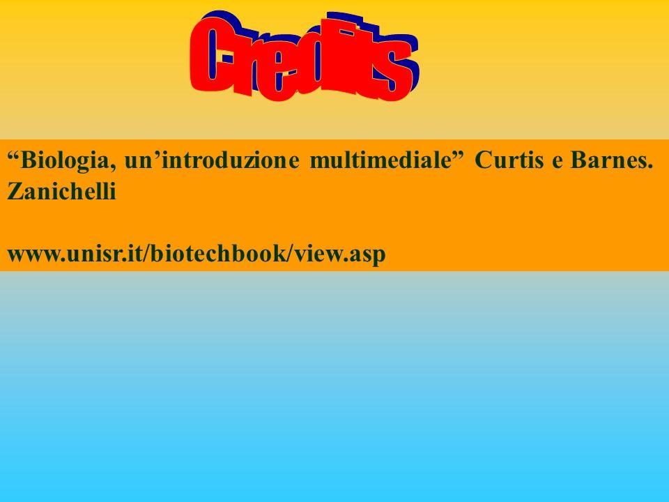 Credits Biologia, un'introduzione multimediale Curtis e Barnes.