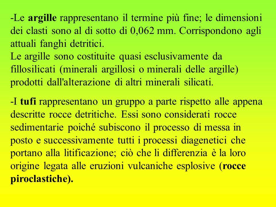 -Le argille rappresentano il termine più fine; le dimensioni dei clasti sono al di sotto di 0,062 mm. Corrispondono agli attuali fanghi detritici. Le argille sono costituite quasi esclusivamente da fillosilicati (minerali argillosi o minerali delle argille) prodotti dall alterazione di altri minerali silicati.