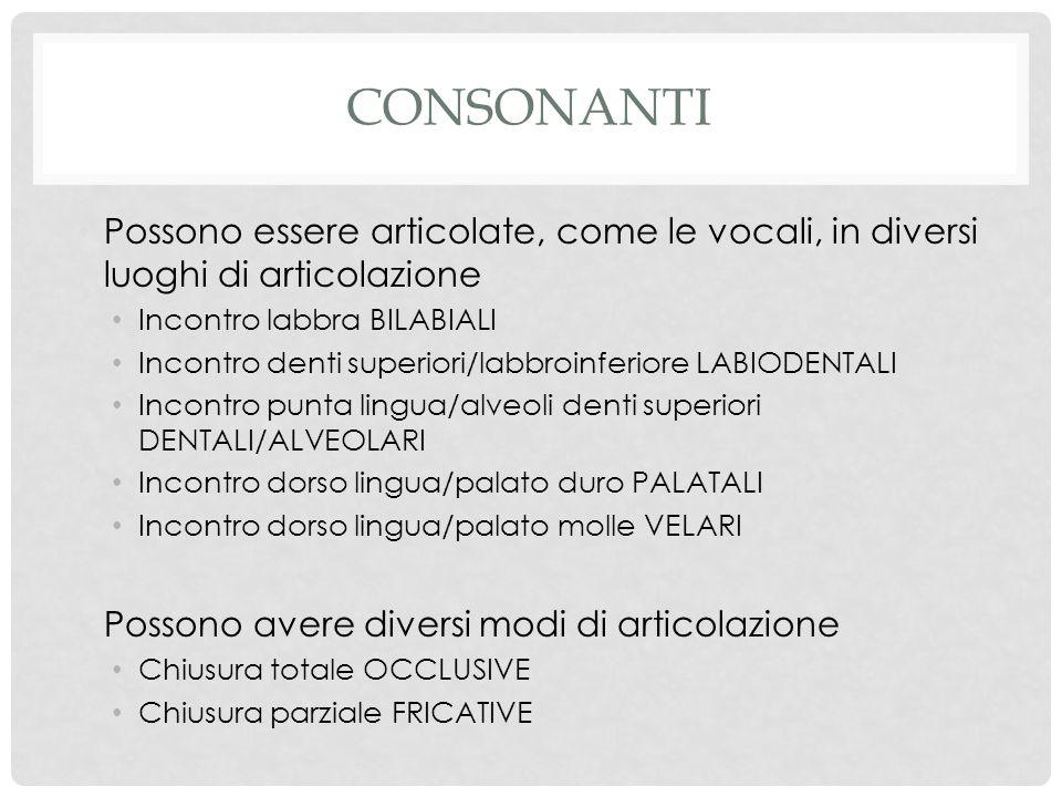 consonanti Possono essere articolate, come le vocali, in diversi luoghi di articolazione. Incontro labbra BILABIALI.