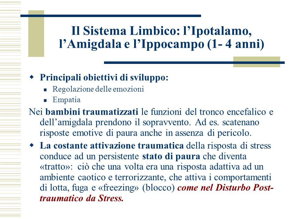 Il Sistema Limbico: l'Ipotalamo, l'Amigdala e l'Ippocampo (1- 4 anni)