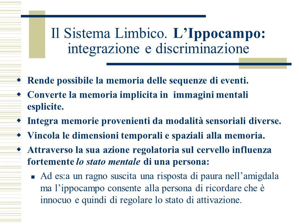 Il Sistema Limbico. L'Ippocampo: integrazione e discriminazione