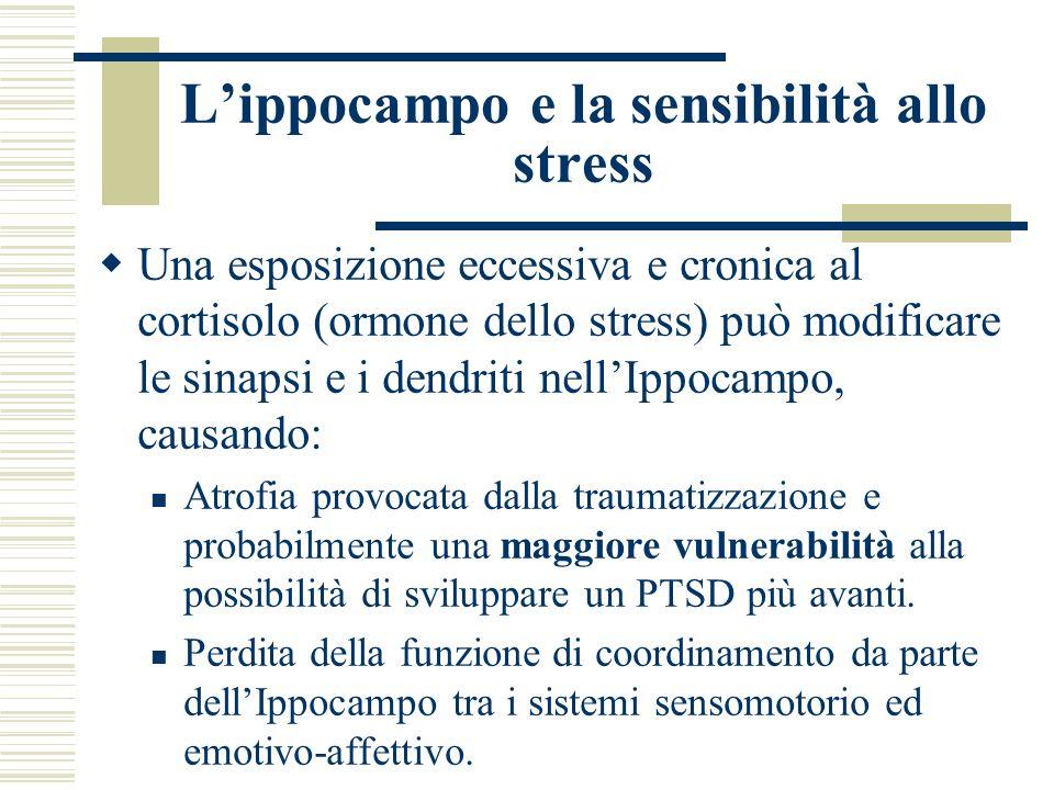 L'ippocampo e la sensibilità allo stress
