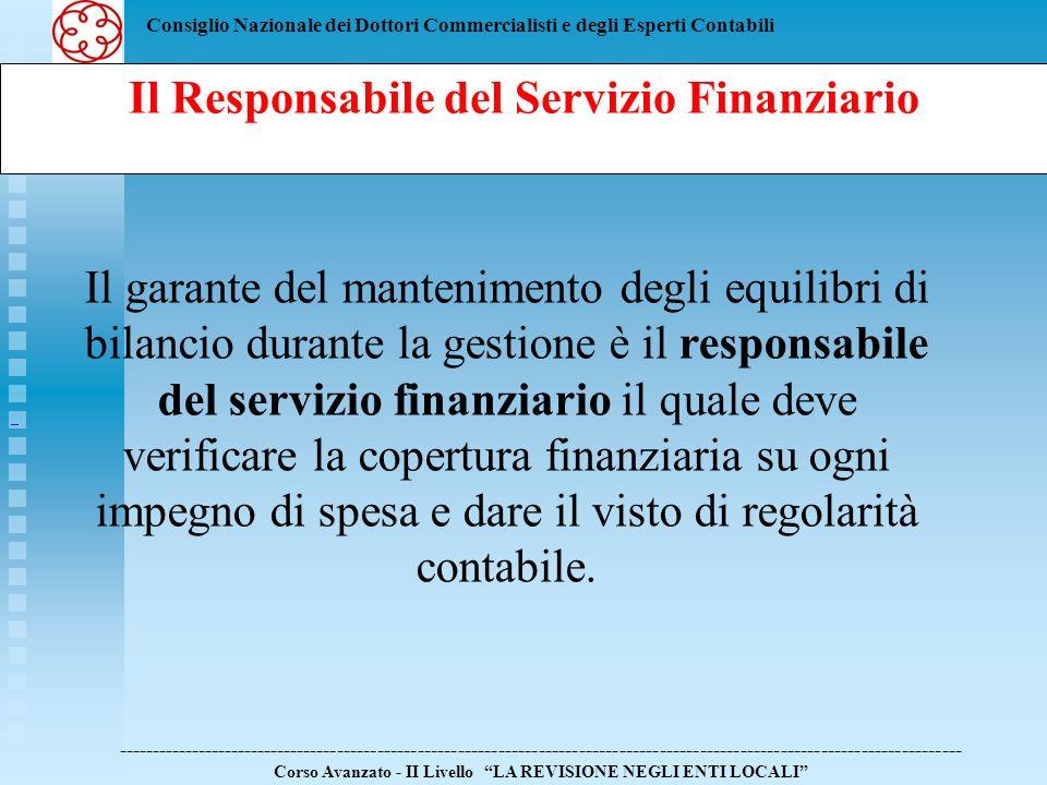 Il Responsabile del Servizio Finanziario