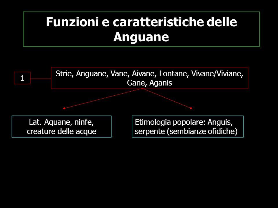 Funzioni e caratteristiche delle Anguane