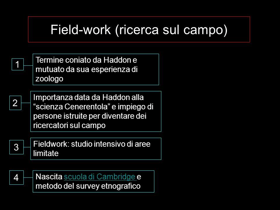 Field-work (ricerca sul campo)