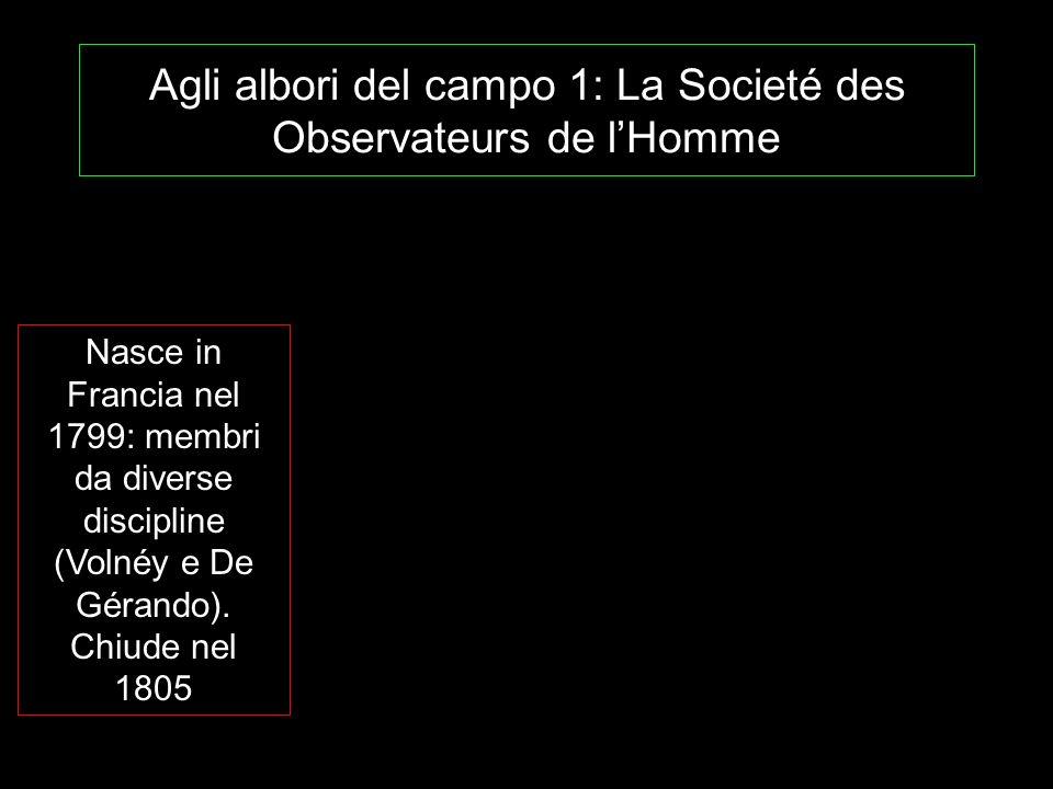 Agli albori del campo 1: La Societé des Observateurs de l'Homme