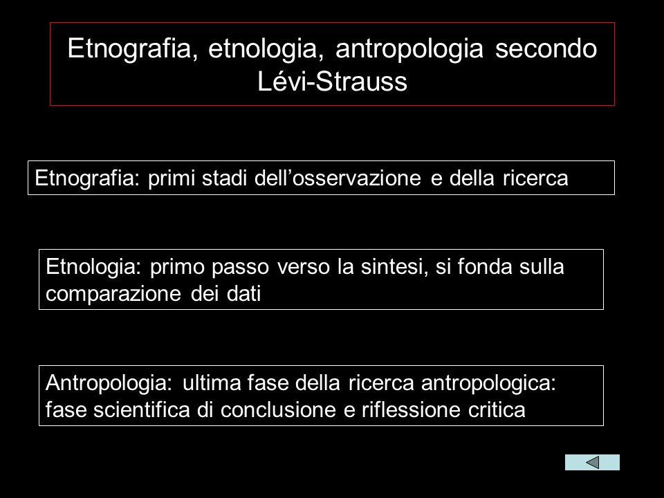 Etnografia, etnologia, antropologia secondo Lévi-Strauss