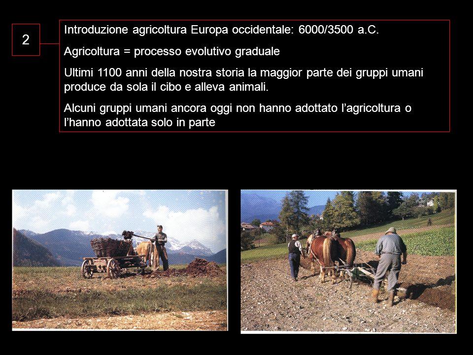 2 Introduzione agricoltura Europa occidentale: 6000/3500 a.C.