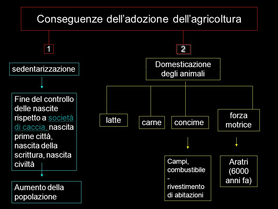 Conseguenze dell'adozione dell'agricoltura