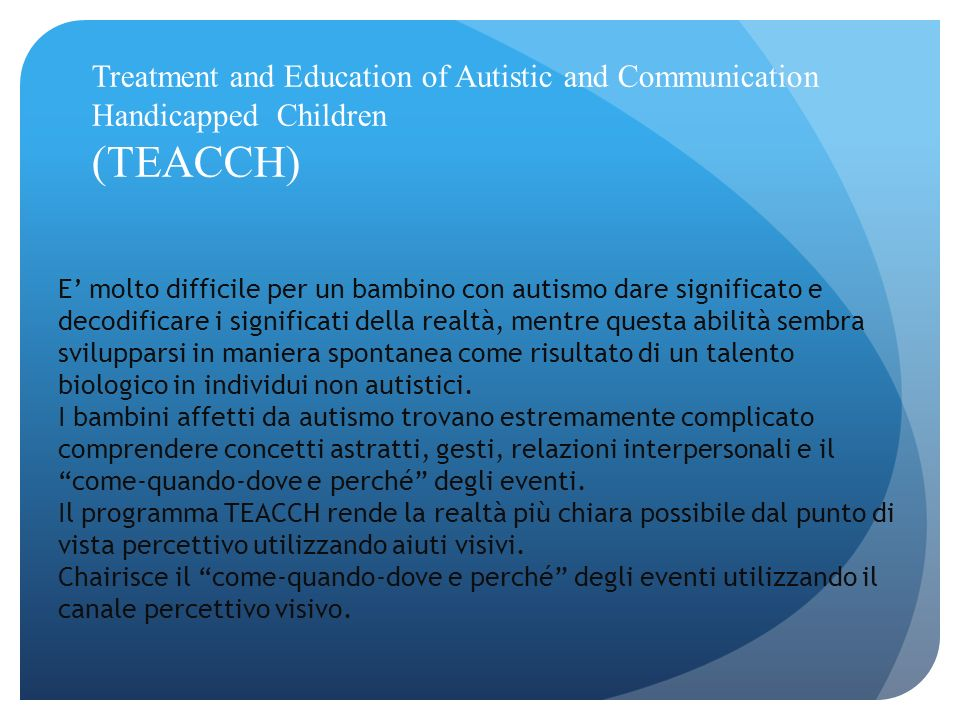 Treatment and Education of Autistic and Communication Handicapped Children (TEACCH)