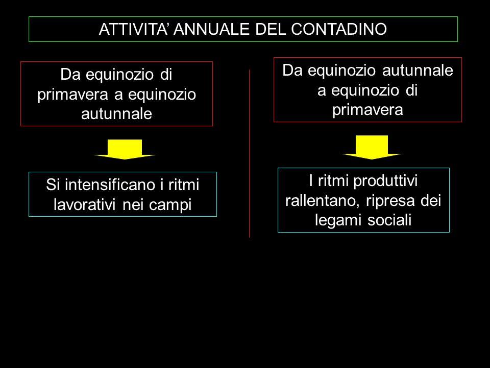 ATTIVITA' ANNUALE DEL CONTADINO