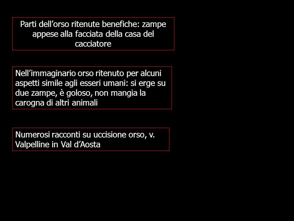 Numerosi racconti su uccisione orso, v. Valpelline in Val d'Aosta
