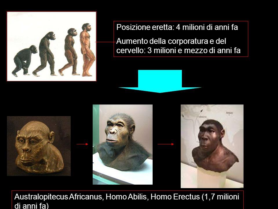 Posizione eretta: 4 milioni di anni fa