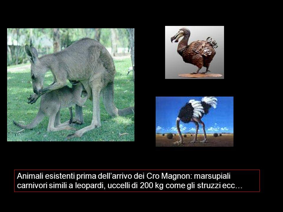Animali esistenti prima dell'arrivo dei Cro Magnon: marsupiali carnivori simili a leopardi, uccelli di 200 kg come gli struzzi ecc…