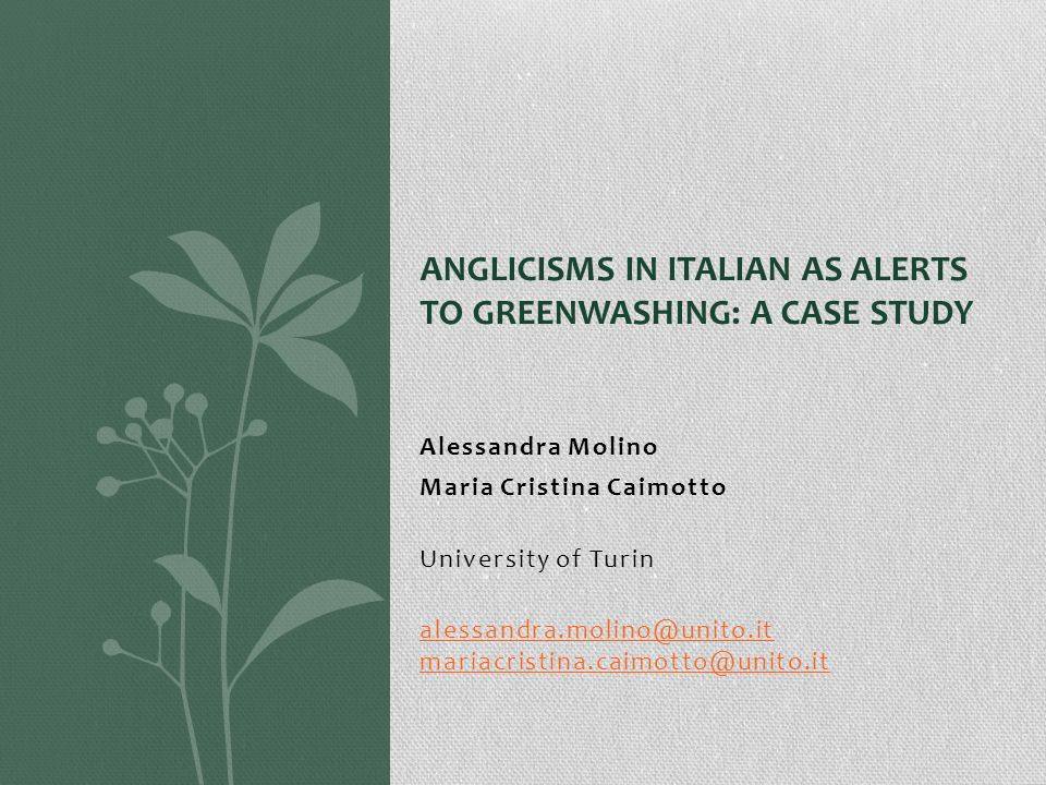 Anglicisms in Italian as Alerts to Greenwashing: A Case Study