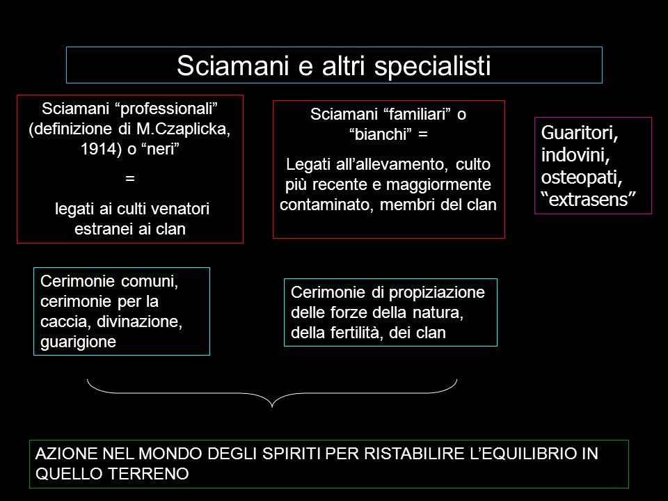 Sciamani e altri specialisti