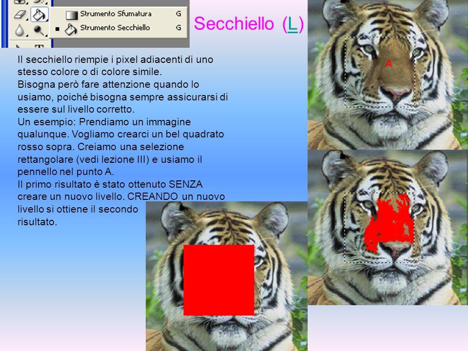Secchiello (L)Il secchiello riempie i pixel adiacenti di uno stesso colore o di colore simile.