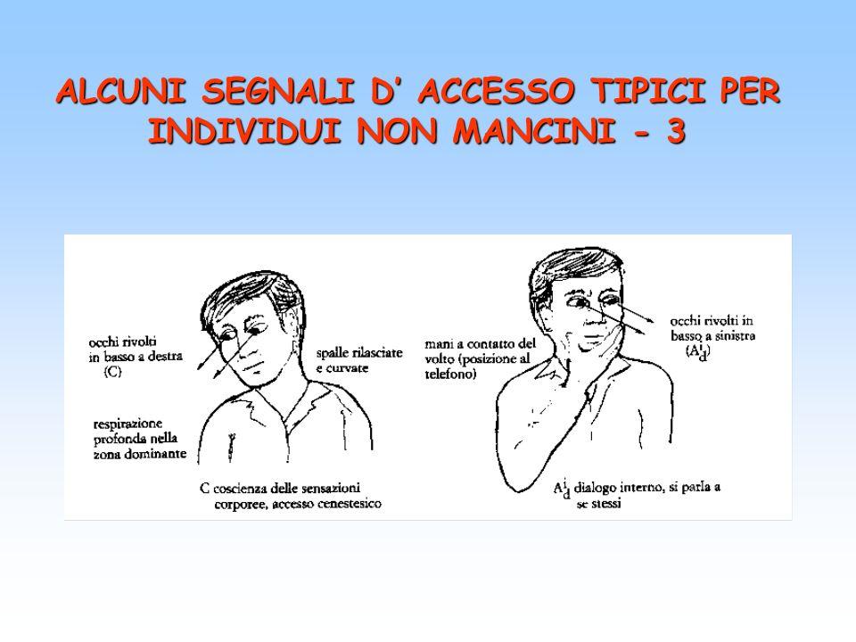 ALCUNI SEGNALI D' ACCESSO TIPICI PER INDIVIDUI NON MANCINI - 3