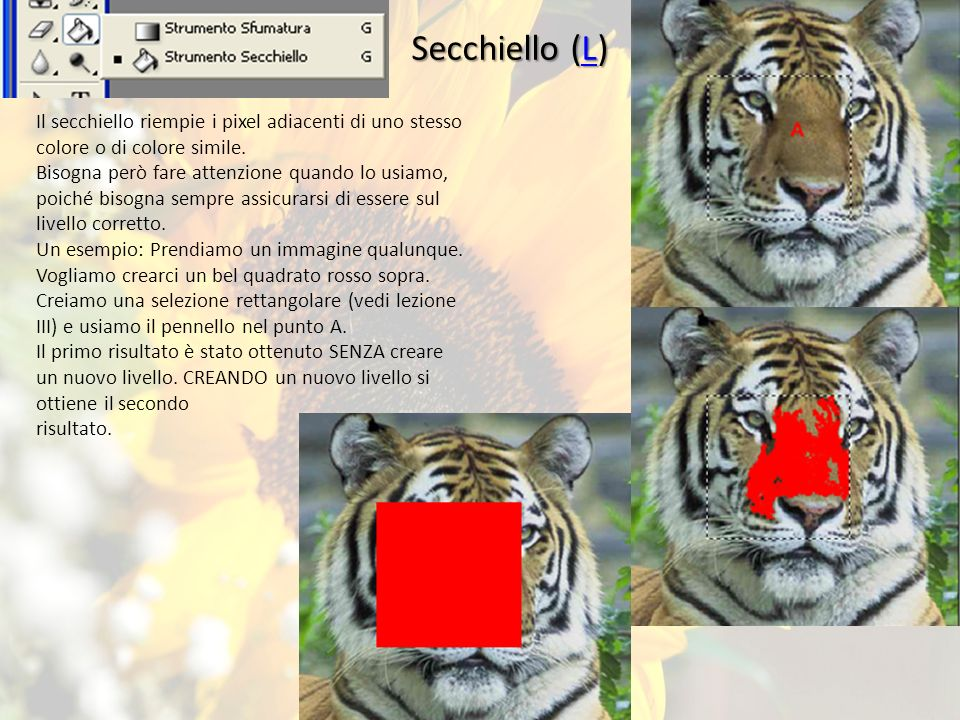 Secchiello (L) Il secchiello riempie i pixel adiacenti di uno stesso colore o di colore simile.
