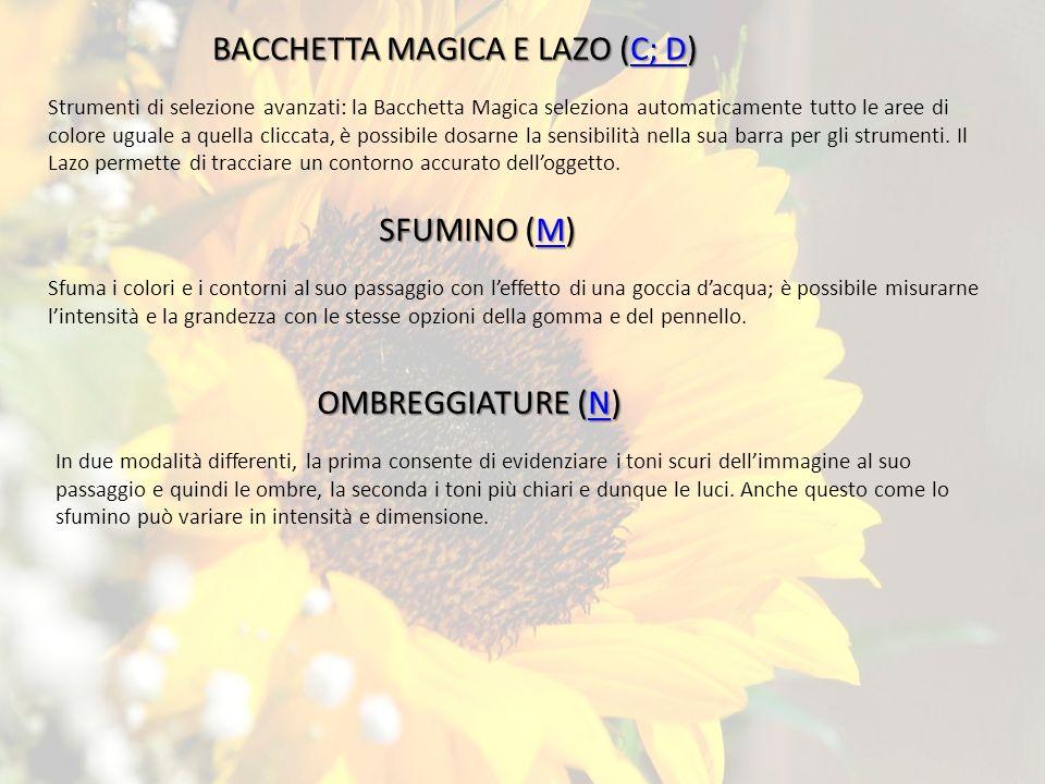 BACCHETTA MAGICA E LAZO (C; D)