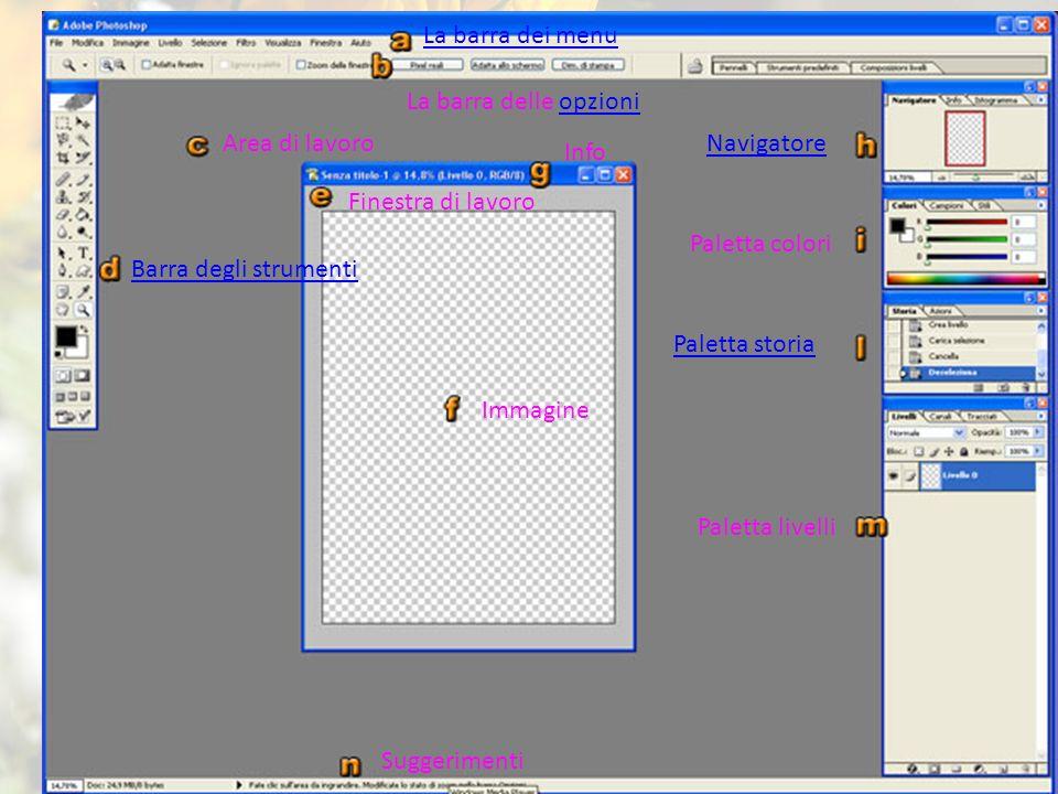 LE BASI La barra dei menu La barra delle opzioni Area di lavoro
