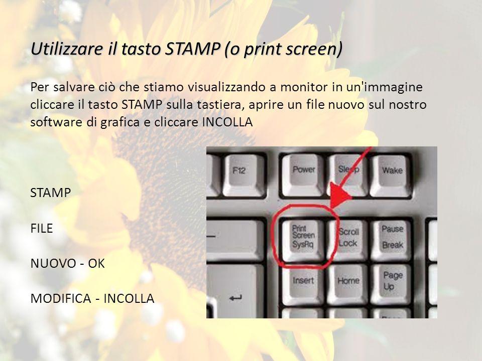 Utilizzare il tasto STAMP (o print screen)