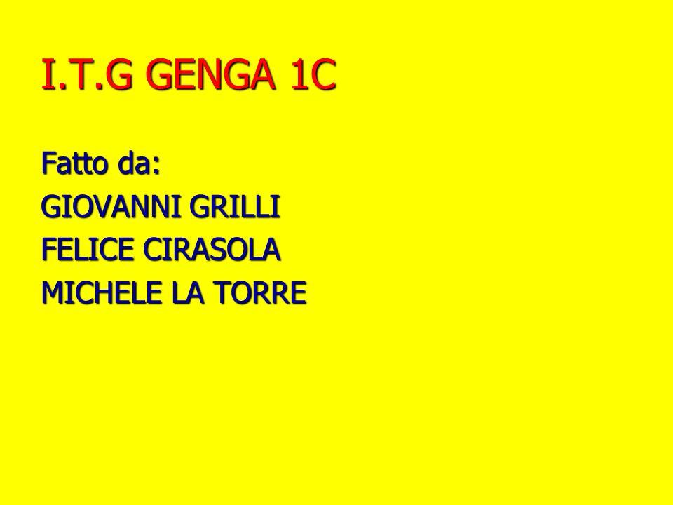 I.T.G GENGA 1C Fatto da: GIOVANNI GRILLI FELICE CIRASOLA