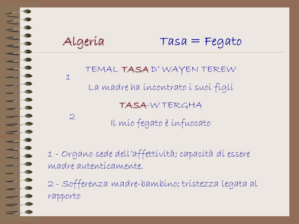 Algeria Tasa = Fegato TEMAL TASA D' WAYEN TEREW