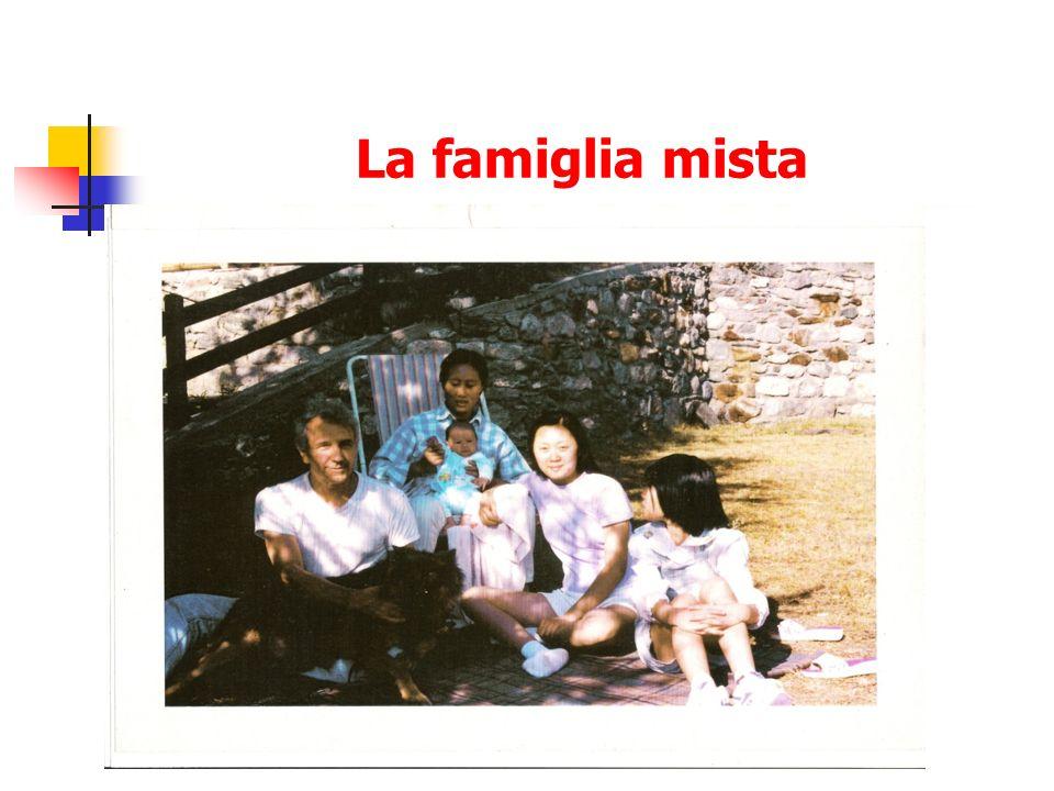 La famiglia mista