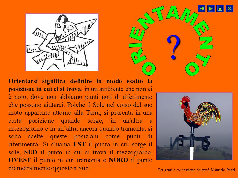 Per gentile concessione del prof. Maurizio Pezzi