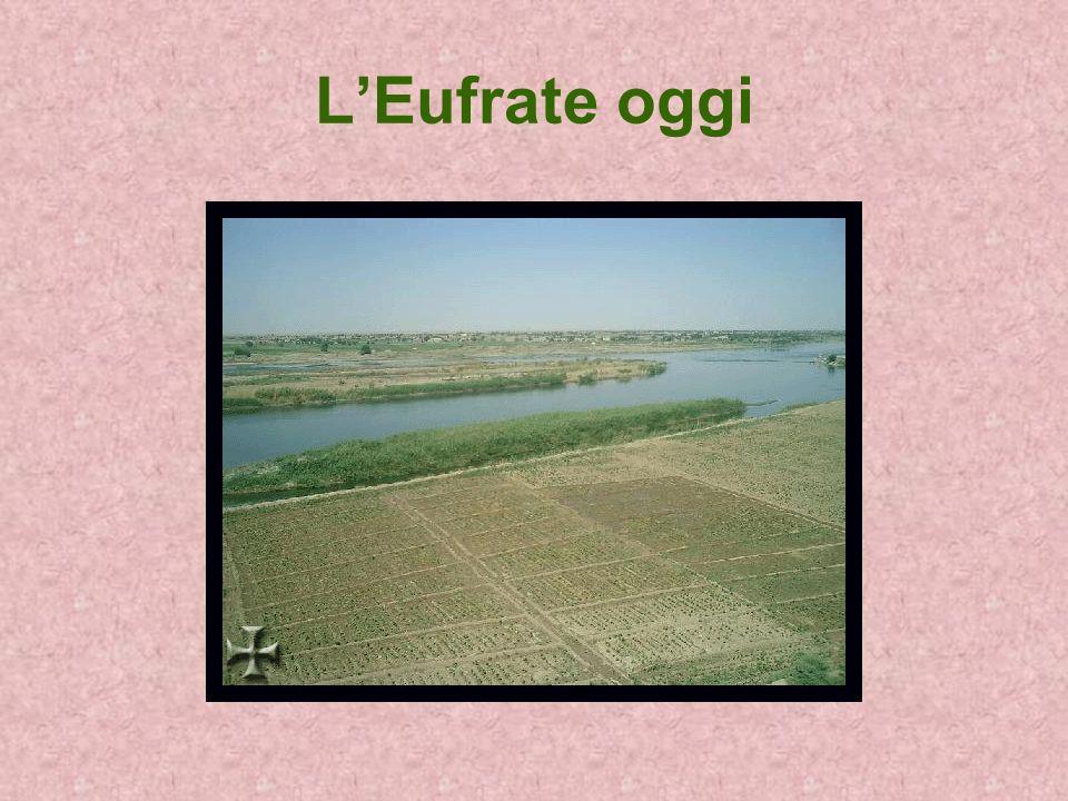 L'Eufrate oggi