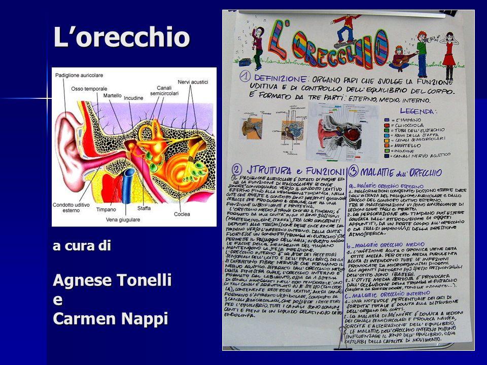 L'orecchio a cura di Agnese Tonelli e Carmen Nappi