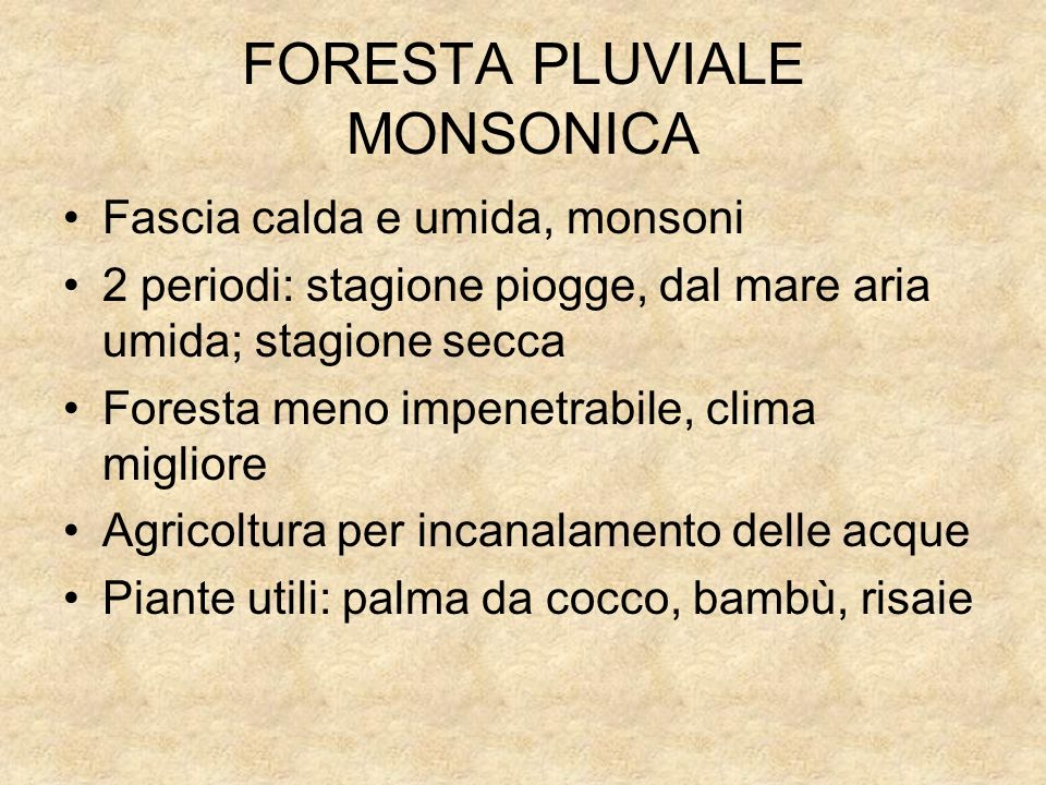 FORESTA PLUVIALE MONSONICA