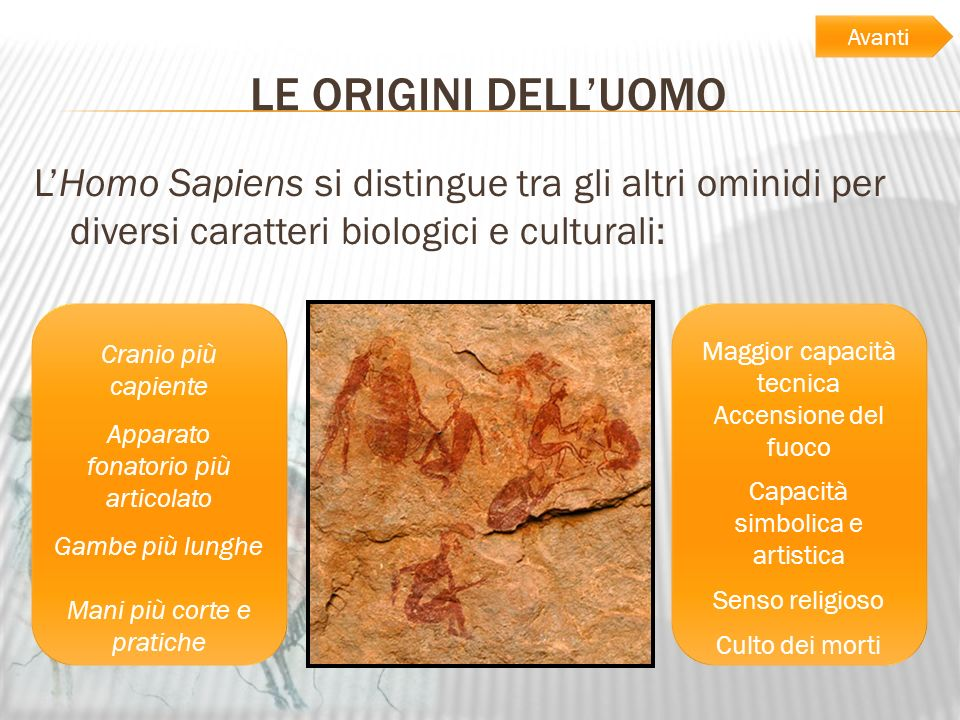 AvantiLE ORIGINI DELL'UOMO. L'Homo Sapiens si distingue tra gli altri ominidi per diversi caratteri biologici e culturali: